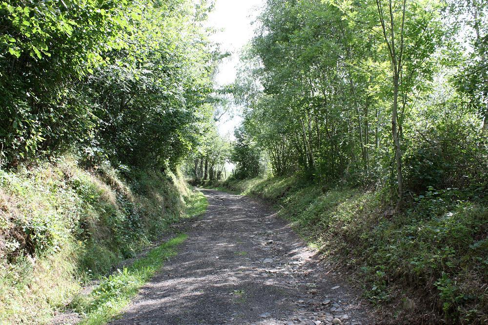 Site officiel des Gites de France Auvergne Rservez votre location