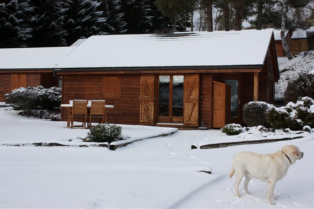 pour les vacances de Noël location de gîte en Auvergne trés grande photo 10