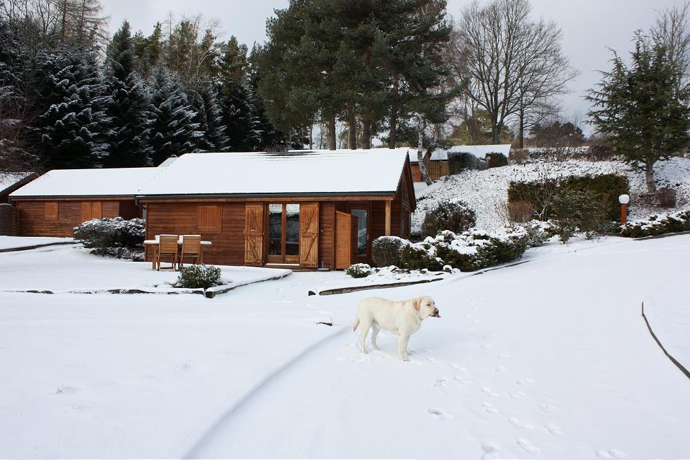 location gite vacances de Nouvel-an ou Saint-Sylvestre en Auvergne trés grand 8